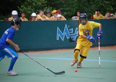 hockey-rink