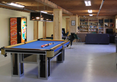 Rec-Room-Pool-Table